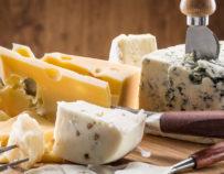 Verkostung französischer Käse