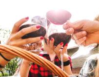 Ausflug zu Weingütern um Montpellier