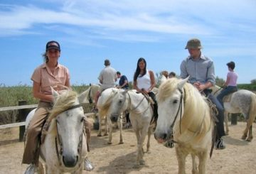 Horse back riding in the Camargue, organised by EasyFrench
