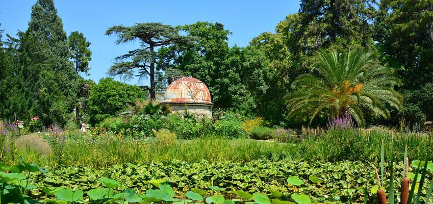 A Garden of Eden To Enjoy During French Language Stays in Montpellier