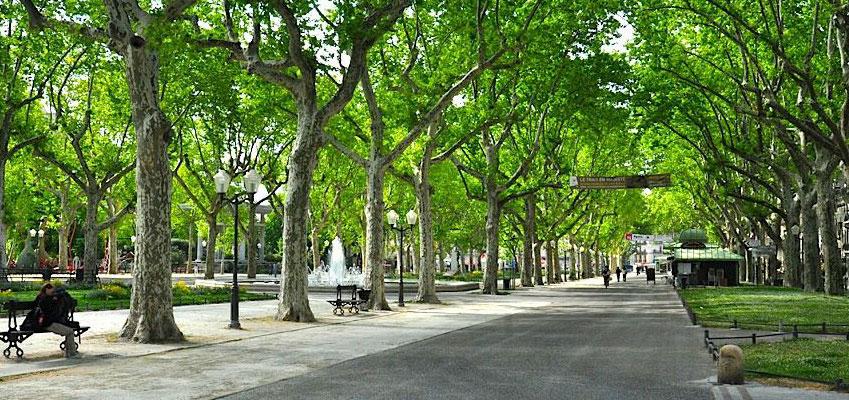L'Esplanade Charles de Gaulle es el Mejor Sitio donde Descansar
